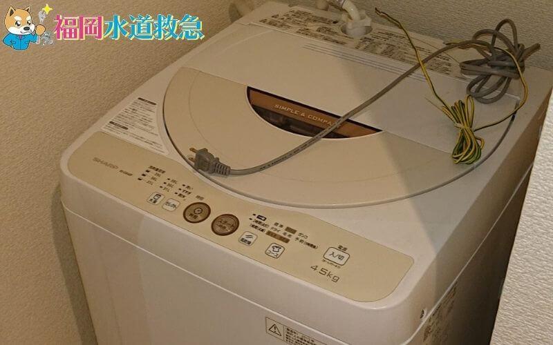 洗濯排水からの悪臭とコバエ発生の改善|トラップ洗浄と排水ホース再施工で解決!【福岡市博多区の事例】