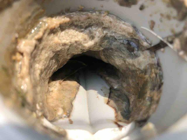 汚れが詰まった排水管