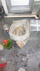 排水管から取り除いた油の塊