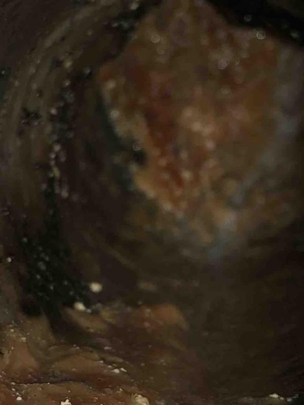 汚れが詰まっている排水管