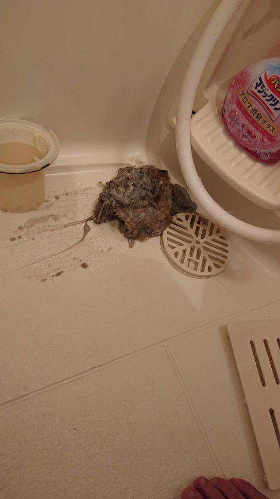 排水口に溜まっていた汚れの塊