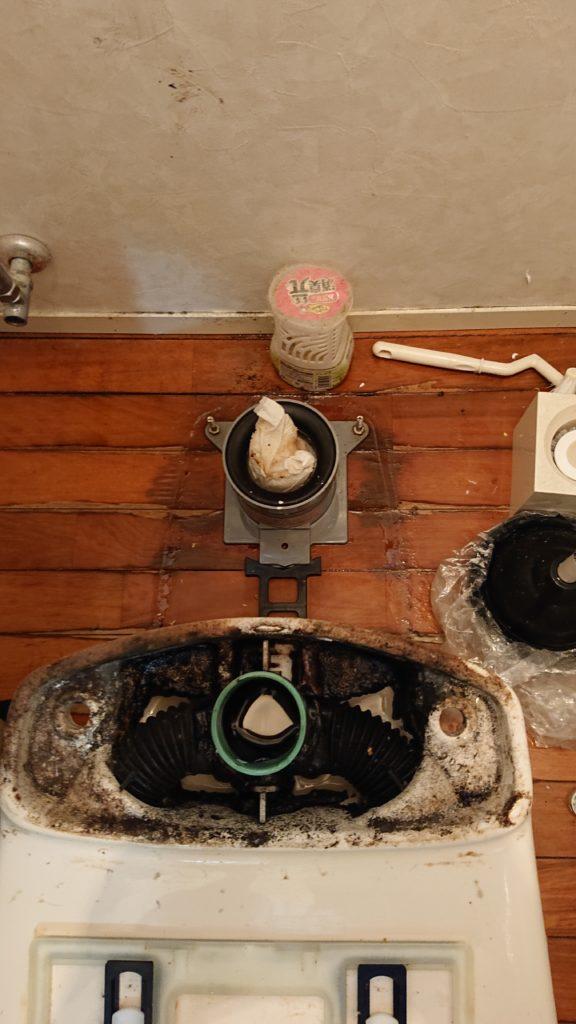 トイレの排水管の入口に異物が引っかかっている