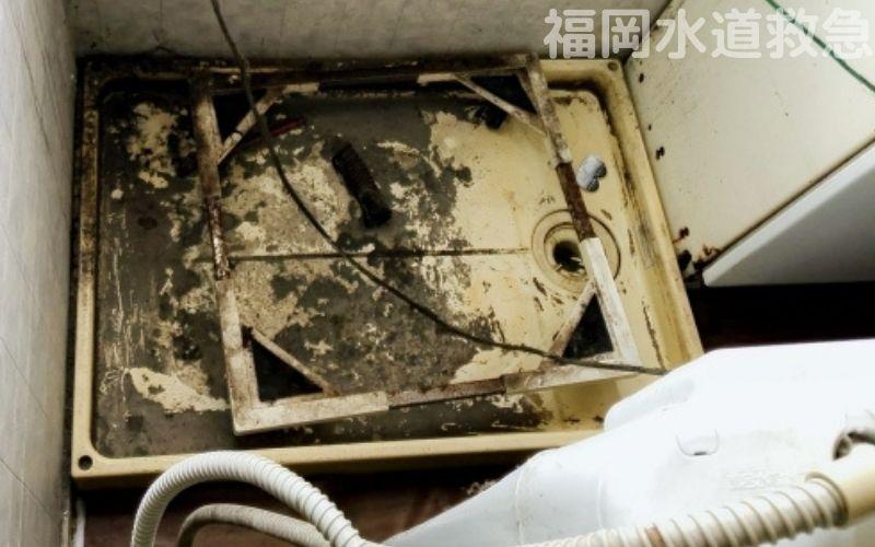 洗濯排水つまり修理|排水周辺を洗浄し解決!【福岡県嘉麻市の事例】