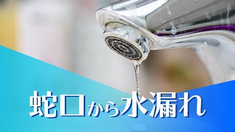 蛇口から水漏れ