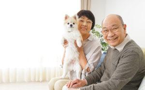 お客様の声 熊本市東区友田の老夫婦