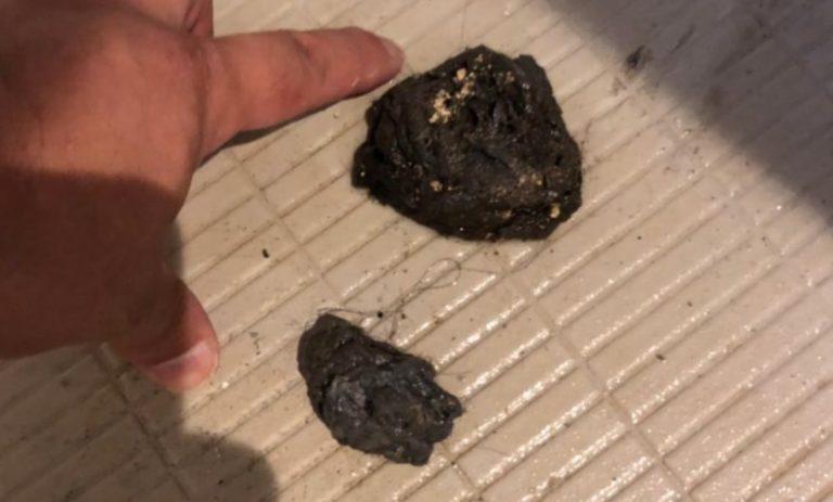 排水口から出た汚れの塊